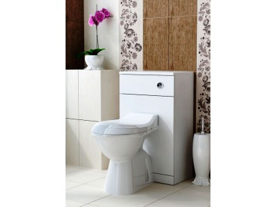 Back to wall toilet unit